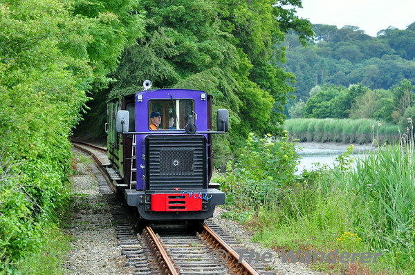 Waterford & Suir Valley Railway Saturday 28th June 2014